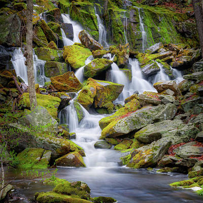 Photograph - Mossy Rock Falls Square by Bill Wakeley