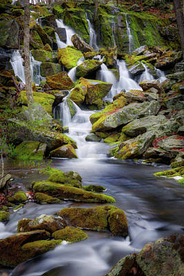 Photograph - Mossy Rocks Falls Portrait by Bill Wakeley