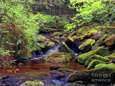 Photograph - Mossy Rocks Fx by Dan Carmichael