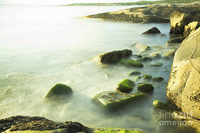 Photograph - Mossy Rocks On Shoreline by Nick Jene