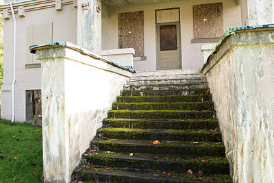 Photograph - Mossy Steps by Tom Cochran