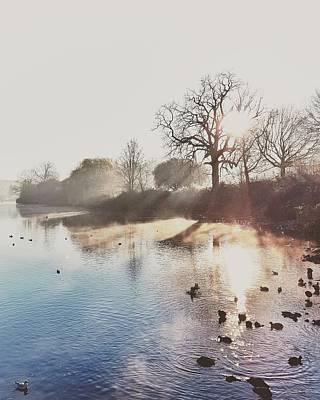 Mote Park Winter Morning  Art Print by Stuart Ellesmere