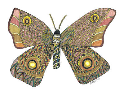 Drawing - Moth by Barbara McConoughey