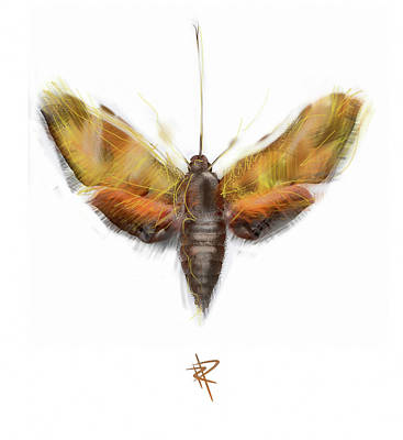 Digital Art - Moth by Russell Pierce