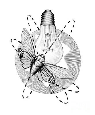 Lightbulb Drawing - Moth To The Flame by Ella Mazur