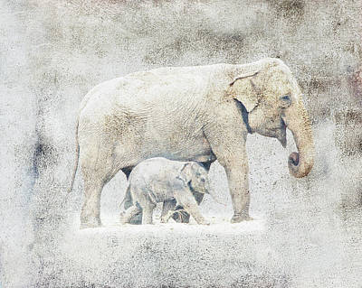 Photograph - Mother And Baby Elephant Minimalism by Georgiana Romanovna