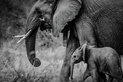 Photograph - Mother And Child by Unsplash