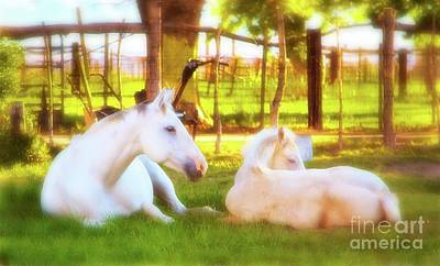 Palomino Foal Photograph - Mother And Son At Morning by Gus McCrea