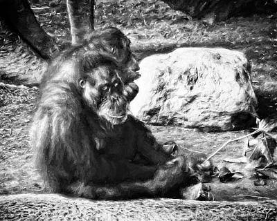 Mother And Son At The Zoo Original