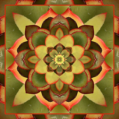 Spiritual. Geometric Photograph - Mother Lotus by Bell And Todd
