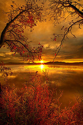 Mother Nature's Son Art Print by Phil Koch