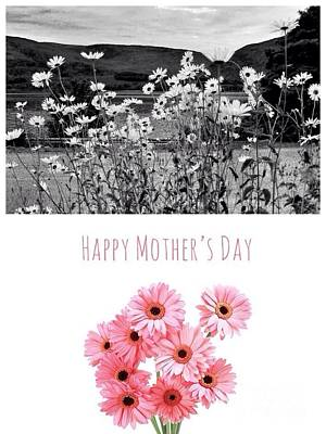 Photograph - Mother's Day Daisies by Joan-Violet Stretch