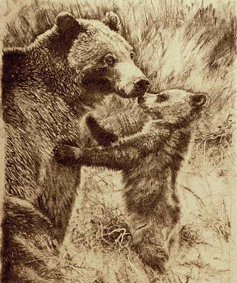 Sweet Kiss Drawing - Mothers Touch - Bears by Susie Gordon