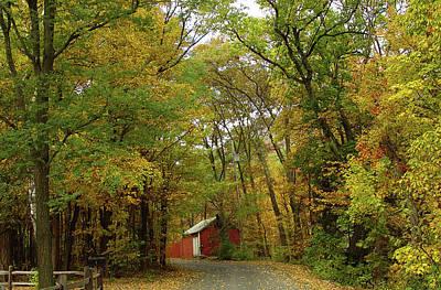 Photograph - Motif Number One Palenville Autumn by Terrance DePietro
