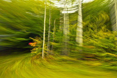 Motion In Time Original by James Steele