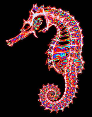 Digital Art - Motley Hippocampus by Larry Beat