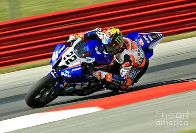 Bear Photography Rights Managed Images - Monster Yamaha Motorcyclist on the track Royalty-Free Image by Douglas Sacha