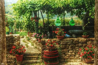 Mixed Media - Motovun Garden by Bill Oliver