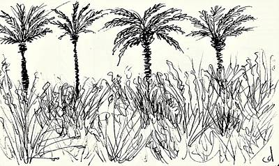 Water Activity Drawing - Motril by Chani Demuijlder