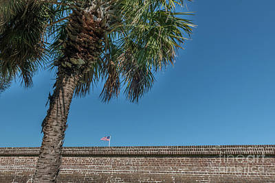 Photograph - Moultrie Brick Wall by Dale Powell