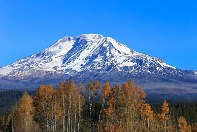 Photograph - Mount Adams  by Lynn Hopwood