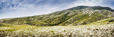 Mountain Royalty-Free and Rights-Managed Images - Mount Agnew landscape in Tasmania by Jorgo Photography - Wall Art Gallery