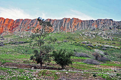 Photograph - Mount Arbel 4 by Lydia Holly