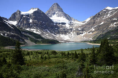 Photograph - Mount Assiniboine Canada 16 by Bob Christopher