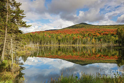 Photograph - Mount Deception - Carroll New Hampshire by Erin Paul Donovan
