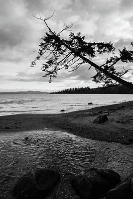 Photograph - Mount Douglas Park by Perggals - Stacey Turner