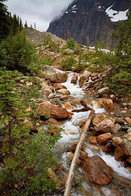 Photograph - Mount Edith Cavell Stream 1 by David Beebe