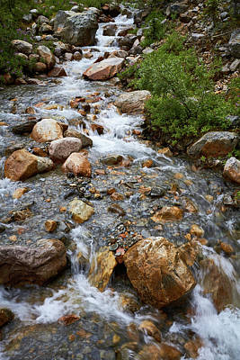 Photograph - Mount Edith Cavell Stream 2 by David Beebe