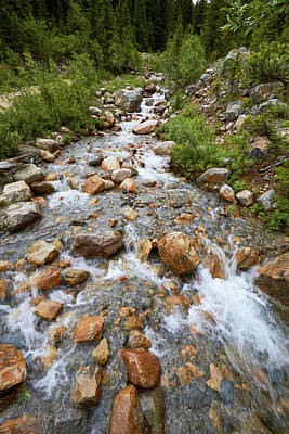 Photograph - Mount Edith Cavell Stream 3 by David Beebe