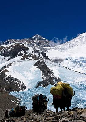 Gaurav Agrawal Photograph - Mount Everest by Gaurav Agrawal