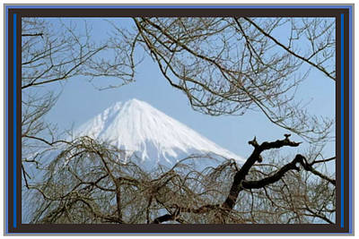 Mixed Media - Mount Fuji Japan Just Before Cherry Blossom by Navin Joshi