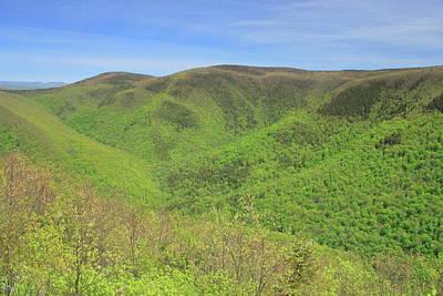 Photograph - Mount Greylock Stony Ledge Spring Leafout by John Burk