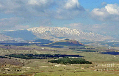 Photograph - Mount Hermon No.2 by Lydia Holly