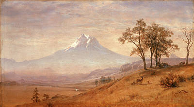 Stag Painting - Mount Hood by Albert Bierstadt