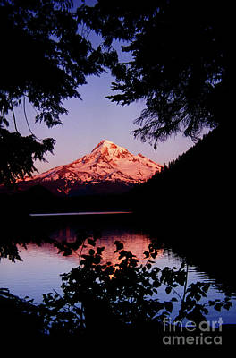 Photograph - Mount Hood Alpine Glow Lost Lake by Rick Bures