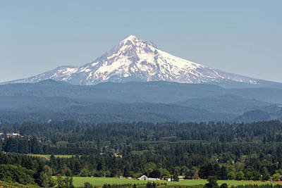 Photograph - Mount Hood In The Summer by David Gn