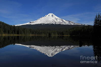 Photograph - Mount Hood by Paula Guttilla
