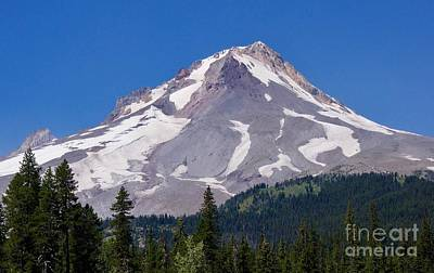 Photograph - Mount Hood by Sean Griffin
