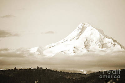 White And Black Waterfalls Photograph - Mount Hood Snow by Andrea Hazel Ihlefeld