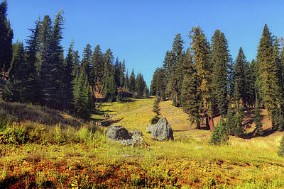 Painting - Mount Lassen Volcanic National Park by Frank Wilson