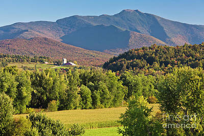 Photograph - Mount Mansfield Early Autumn by Alan L Graham