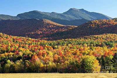 Photograph - Mount Mansfield Fall by Alan L Graham