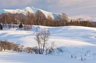 Photograph - Mount Mansfield Winter Landscape  by Alan L Graham