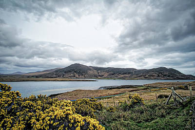 Photograph - Mount Mayo by Chris Hood