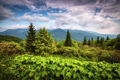 Asheville Wall Art - Photograph - Mount Mitchell Asheville Nc Blue Ridge Parkway Mountains Landscape by Dave Allen