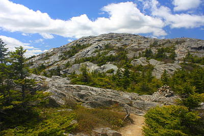 Mount Monadnock Summit From Pumpelly Trail Print by John Burk